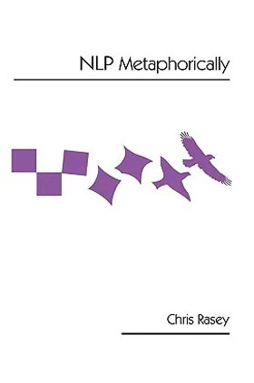NLP Metaphorically Book
