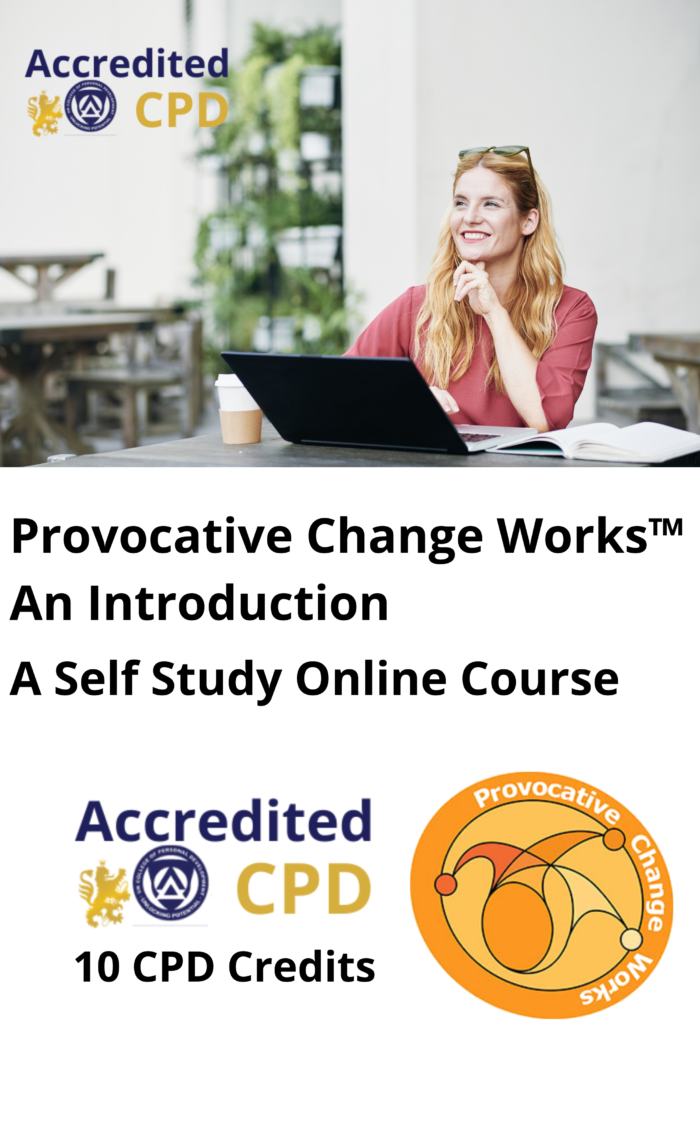 Provocative Change Works™ An Introduction